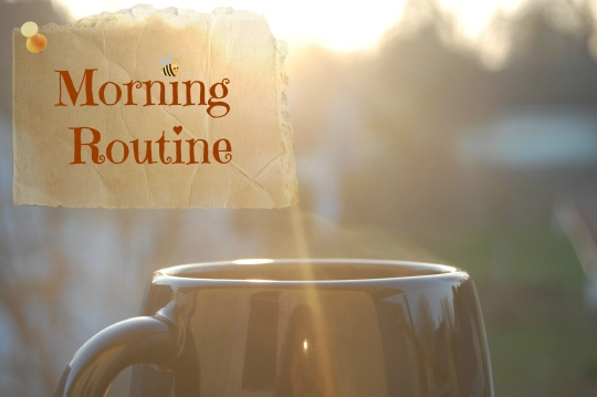 2017-02-04b-morning-routine
